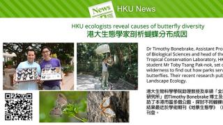 HKU ecologists reveal causes of butterfly diversity