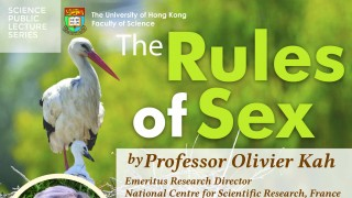 Public Lecture: The Rules of Sex
