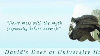 A Snapshot from www.hku.hk: David's Deer at University Hall