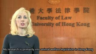 HK Seeks to Update Animal Welfare Laws
