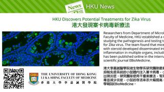 HKU Discovers Potential Treatments for Zika Virus