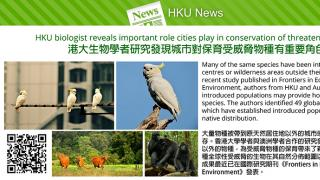 HKU biologist reveals important role cities play in conservation of threatened species