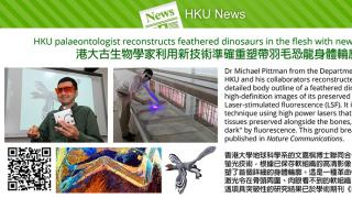 HKU palaeontologist reconstructs feathered dinosaurs in the flesh with new technology