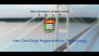Knowledge Exchange Video: New Cartilage Regeneration Technology