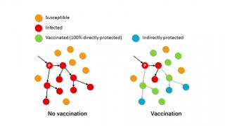 Herd Immunity - Epidemics MOOC Sneak Preview