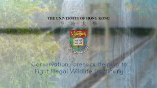 Conservation Forensics Helping to Fight Illegal Wildlife Trafficking
