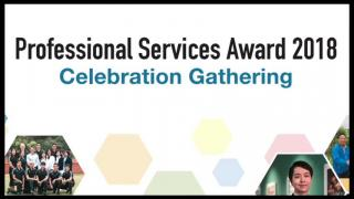 Professional Services Award